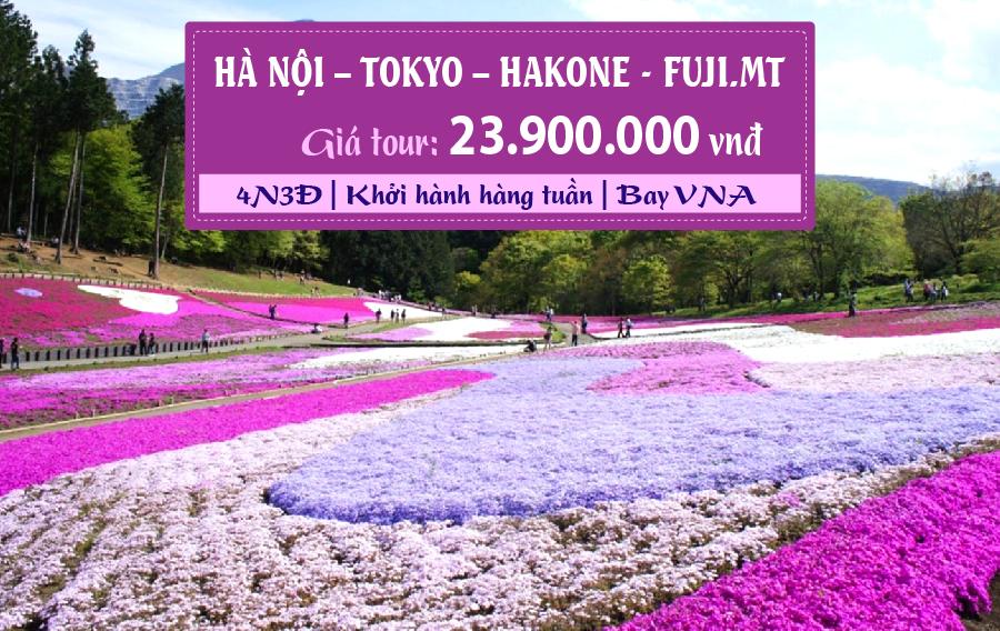 NB18. (4N3Đ) Hà Nội | Tokyo | Hakone | Fuji.Mt